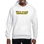 WWCD? Hooded Sweatshirt