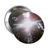 Shine 2.25&quot; Button