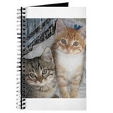 Orange and Gray Tabby Kitty Cats Journal