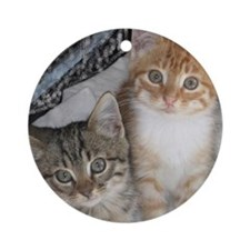 Orange and Gray Tabby Kitty Cats Ornament (Round)