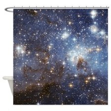 LH 95 Shower Curtain