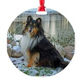 Frozen pond Sheltie Ornament