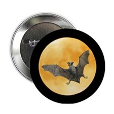 "Bat Squirrel Moon 2.25"" Button"