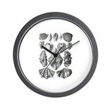 Shell Fossils Wall Clock