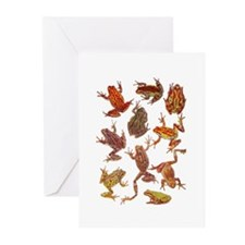 Tree Frogs Greeting Cards (Pk of 20)
