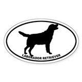 Labrador Retriever BW Bumper Stickers