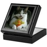 Cats Play Keepsake Box