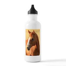 horse portrait Water Bottle