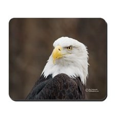 """Eagle"" Wildlife Mousepads (1)"