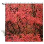 Maple red Shower Curtain