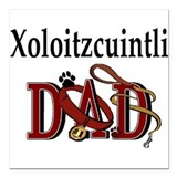 "Xoloitzcuintli Dad Square Car Magnet 3"" x 3"""