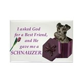 Cute Schnauzer items Rectangle Magnet