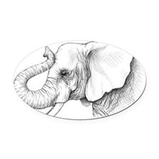 elephant pi.png Oval Car Magnet
