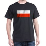 Poland Polish Blank Flag Black T-Shirt