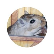 "Gerbil Circle 3.5"" Button (100 pack)"