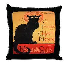 Chat Noir Pillow