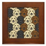 Lots of Labs Framed Tile