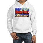 Drew Field Tampa Florida Hooded Sweatshirt