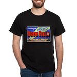 Drew Field Tampa Florida (Front) Black T-Shirt