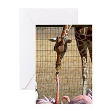 Giraffe and Flamingo Greeting Card