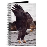 Magnificent Bald Eagle Journal