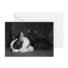Cute French bulldog terrier Greeting Cards (Pk of 10)