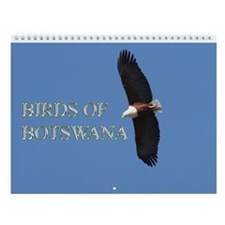 Birds Of Bostwana 2014 - Wall Calendar