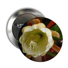 "Mother's Day Flowers 2.25"" Button (10 pack)"