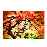 Fire Trees Postcards (Package of 8)