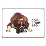 Cool Story Boxer Banner