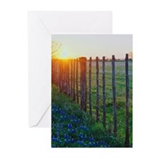 Funny Bluebonnets Greeting Cards (Pk of 10)
