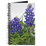 Texas bluebonnets Journal
