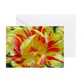 Tulip Greeting Cards (Pk of 10)