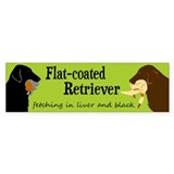 Fetching Flat-coated Retriever Bumper Stickers