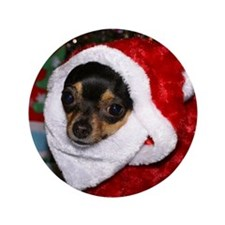 "Chihuahua Santa 3.5"" Button (100 pack)"