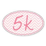 5k Pink Chevron Decal