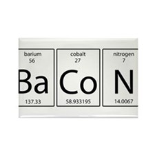 Bacon periodic Rectangle Magnet