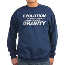 Evolution Just a Theory Sweatshirt