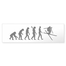 Evolution Ski Bumper Sticker