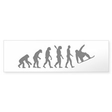 Evolution Snowboard Stickers