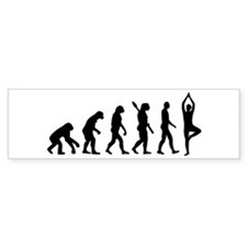 Evolution Yoga Stickers