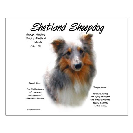 Shetland Sheepdog Small Poster
