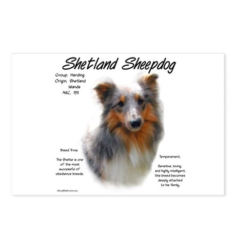 Shetland Sheepdog Postcards (Package of 8)