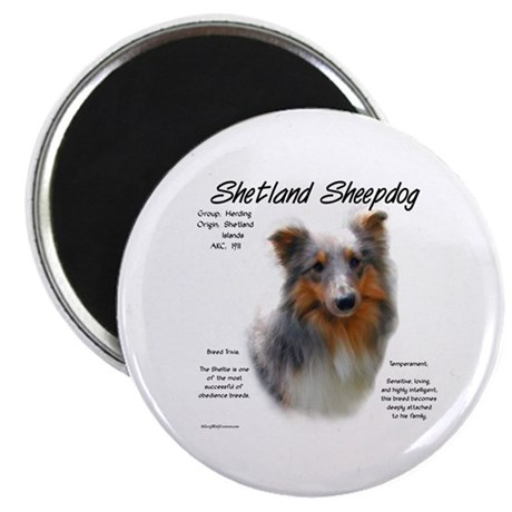 Shetland Sheepdog Magnet