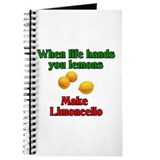 When Life Hands You Lemons Journal