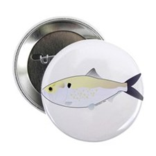 "Menhaden Bunker fish 2.25"" Button (100 pack)"