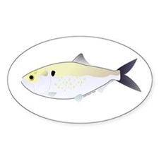 Menhaden Bunker fish Decal