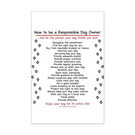 Responsible Dog Owner Mini Poster Print
