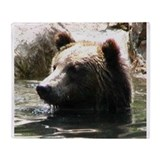 ALERT GRIZZLY 2.JPG Throw Blanket