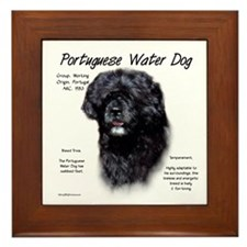 PWD Framed Tile